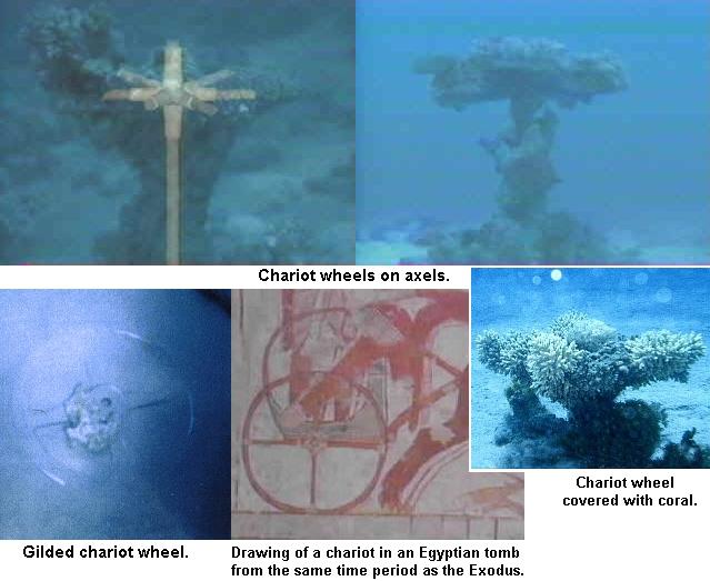 Red sea crossing calciumboy calciumboy sciox Gallery